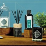 Aromele care ne parfumează locuinţa şi viaţa