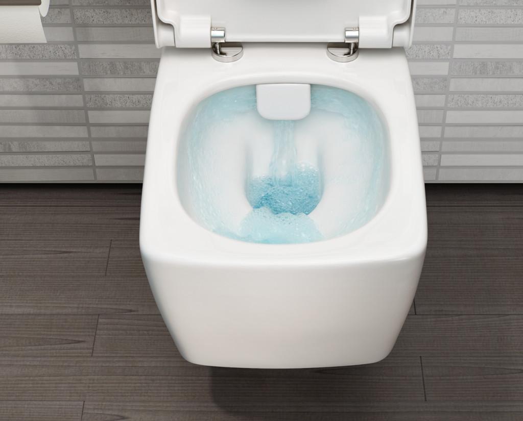 Igiena modernă pentru toalete – sisteme speciale de spalare